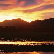 Sedgefield lagoon at sunset